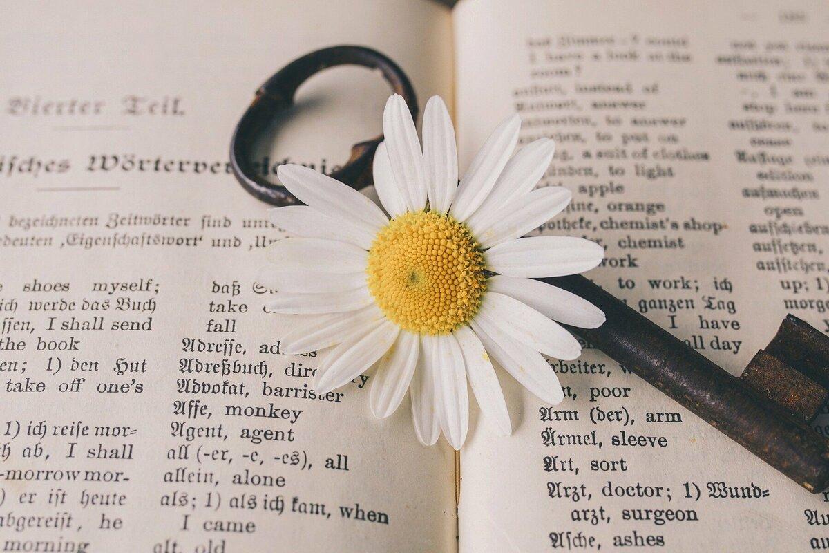英会話・英語学習を楽しめるようになるマインドの作り方