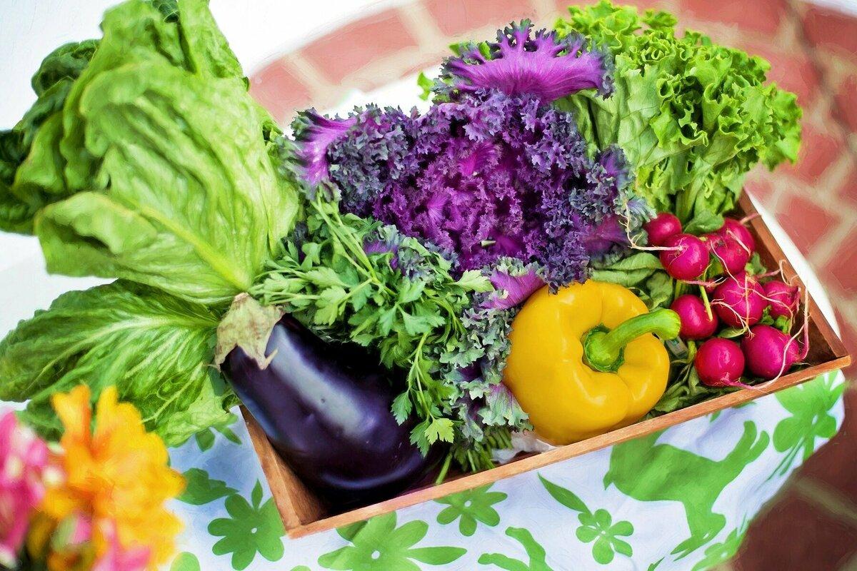 """市場に出回らない""""規格外野菜""""とは?日本農家の現状と再利用のための取り組みをご紹介"""