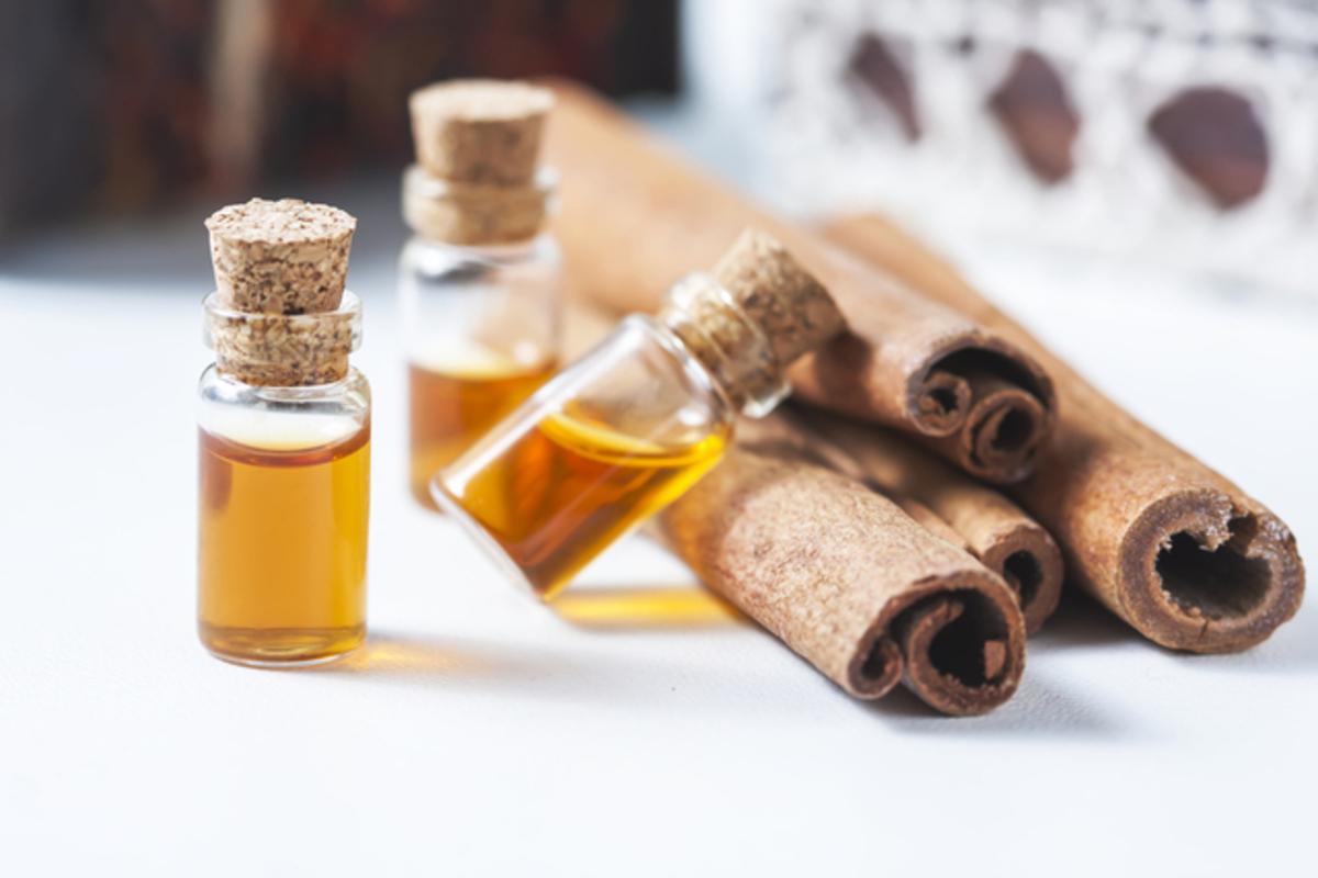 【2020】ボディオイル最新おすすめランキングTOP15!保湿効果や香りも解説